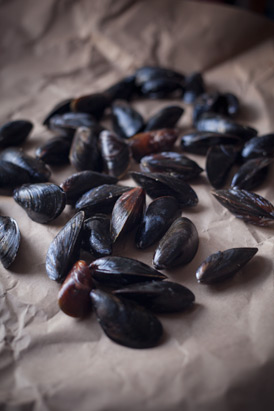 Live Mussels